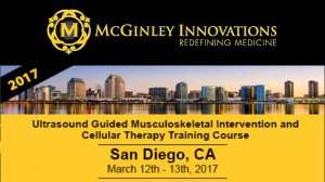 McGinley Innovations 2017